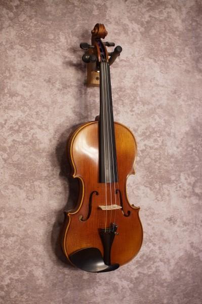 Novisio Violin (3)