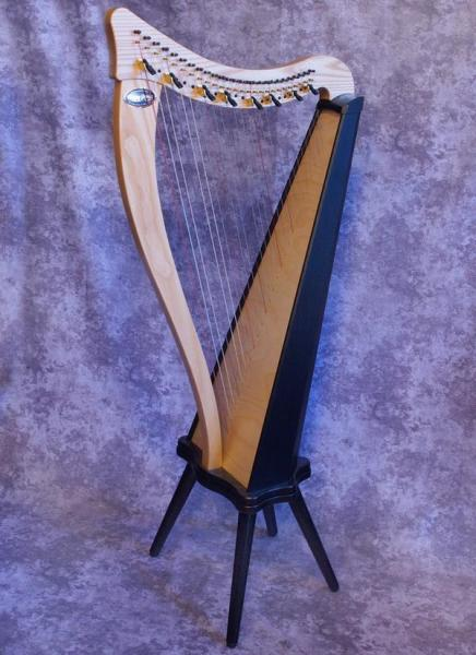 Dusty Strings Ravenna 26 (1)