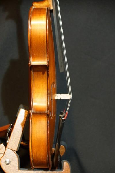 Gliga Gems 1 Five String Fiddle (5)