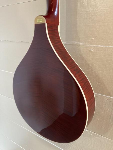 Gold Tone Banjola (wood body banjo) (8)
