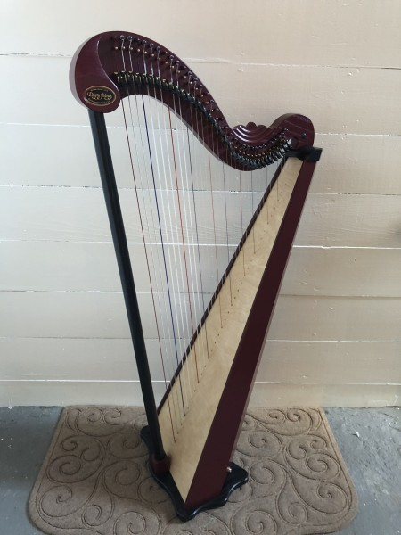 Dusty Strings Serrana 34 Harp w/pickup (1)