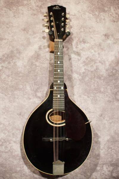 1928 Gibson Black Top A (4)