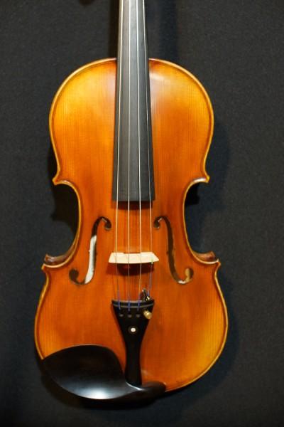 Rosalia Violin Set (1)