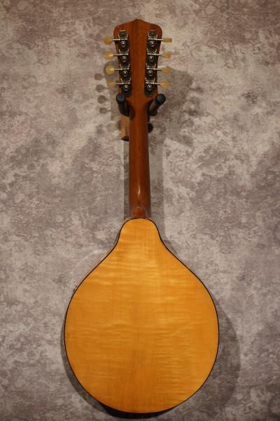 1930's Kalamazoo Oriole (7)