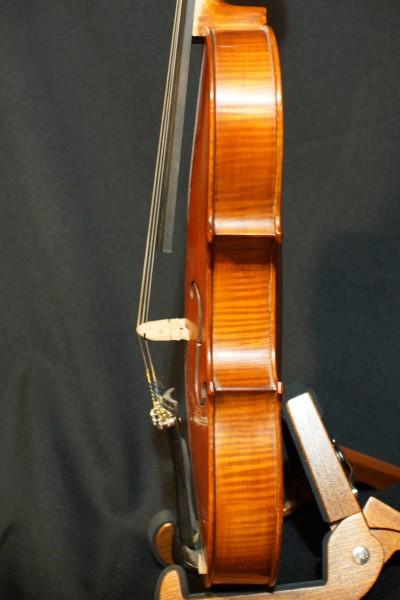 2011 Gliga Viola (7)