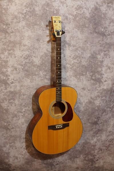 Aria Auditorium Tenor Guitar (3)
