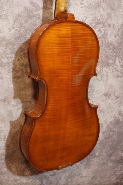 Gliga Viola (3)