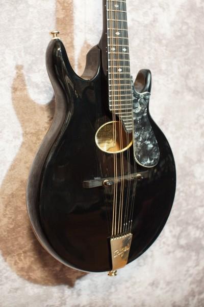 1999 Rigel G-95 (1)