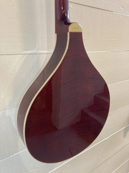 Gold Tone Banjola (wood body banjo) (7)