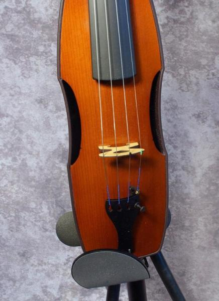 Cricket Fiddle (1)