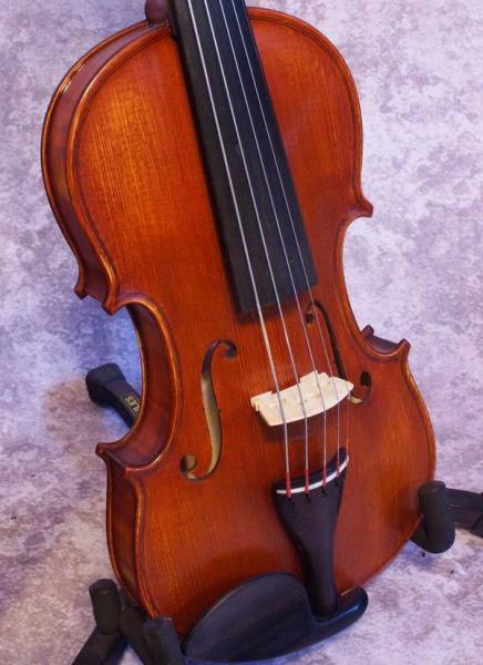 Gliga Gems 1 Five String Fiddle (1)
