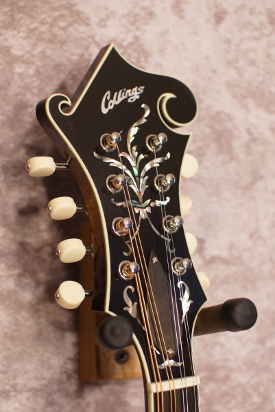 Collings MF5 Fern (5)