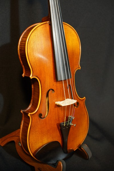 Novisio Violin (6)