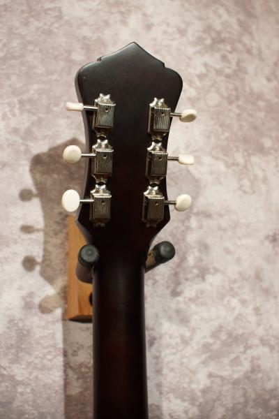 Recording King RPS-9-TS Single O-Parlor Guitar (3)