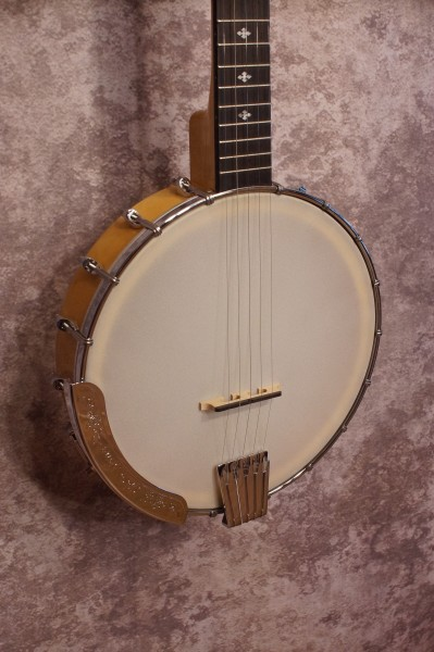 Gold Tone CC100 (2)