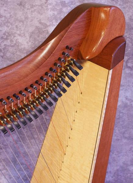 Dusty Strings FH36S Bubinga (2)