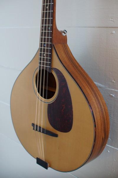 USED Petersen Octave Mandolin (1)