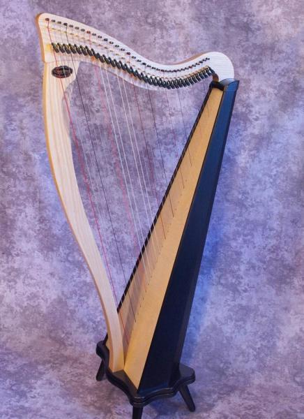 Dusty Strings Ravenna 34 (1)