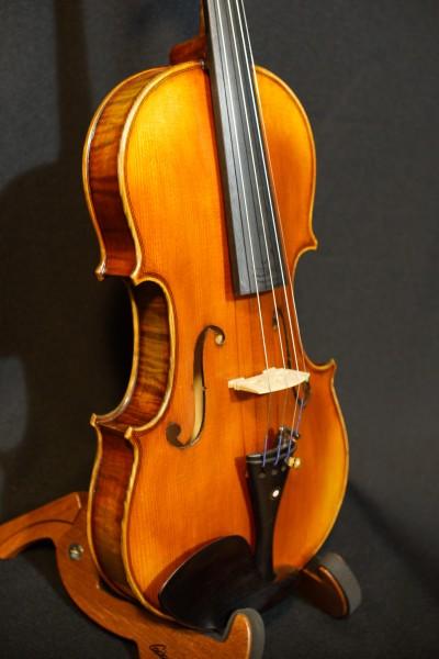 Rosalia Violin Set (7)