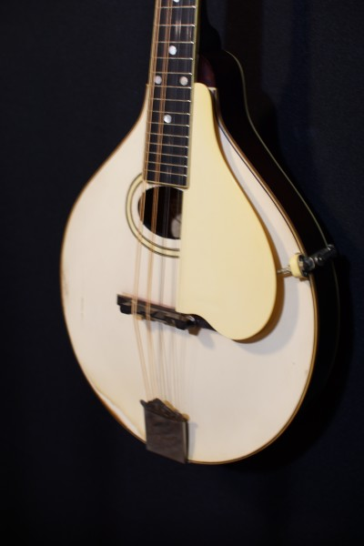 1921 Gibson A-3 Ivory Top (2)