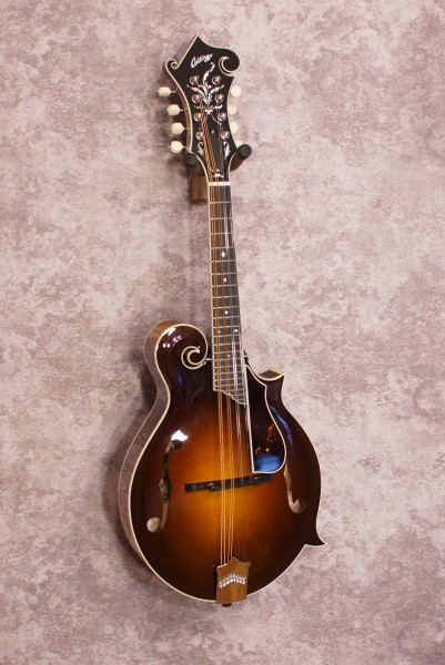 Collings MF5 Fern (4)