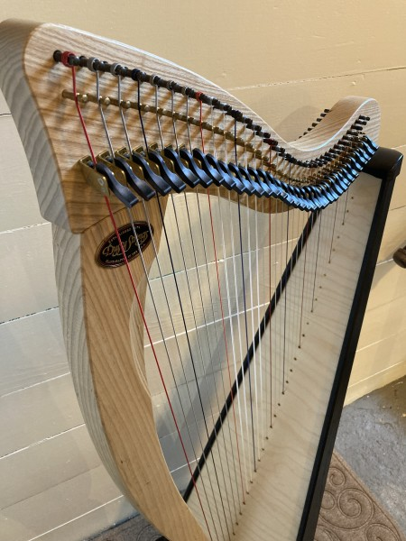 USED Dusty Strings Ravenna 34 (2)