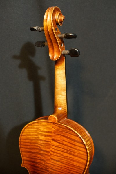 Novisio Violin (4)