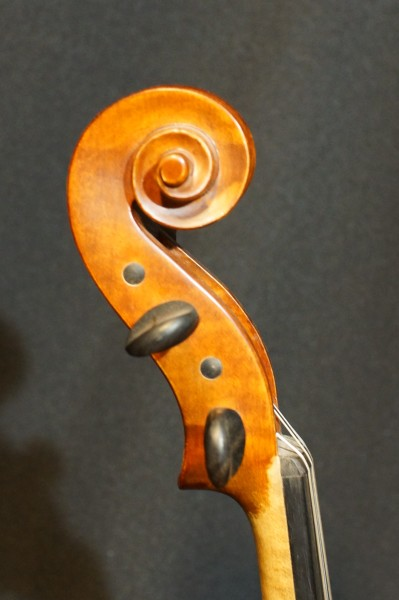 2011 Gliga Viola (2)