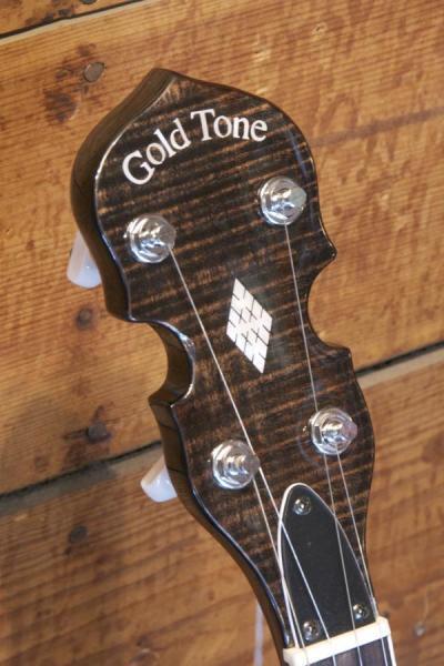 Gold Tone BG 250F (1)