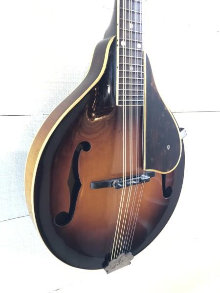 1952 Gibson A-50 (4)