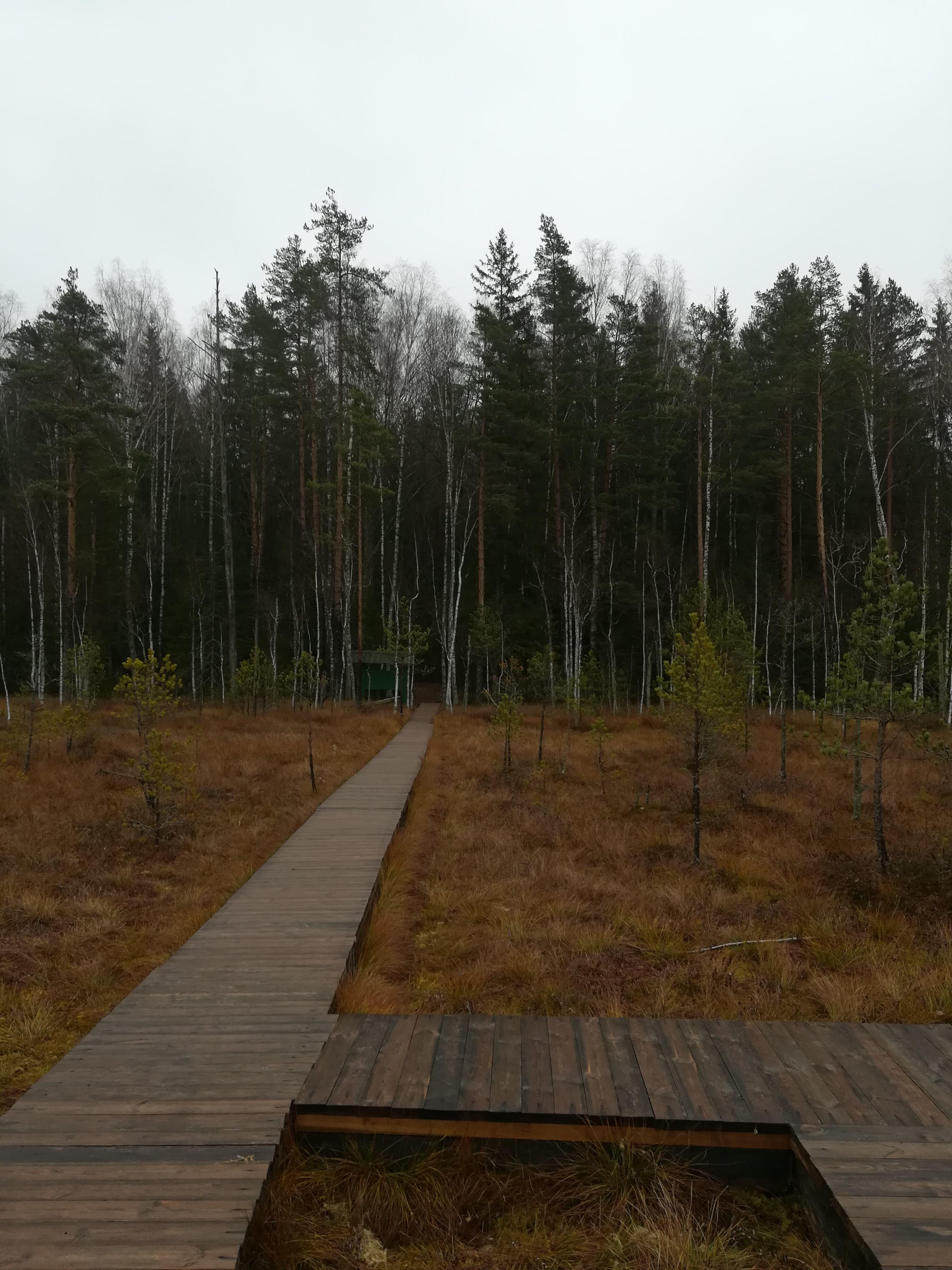 berezensky-nature-reserve-tour Photo