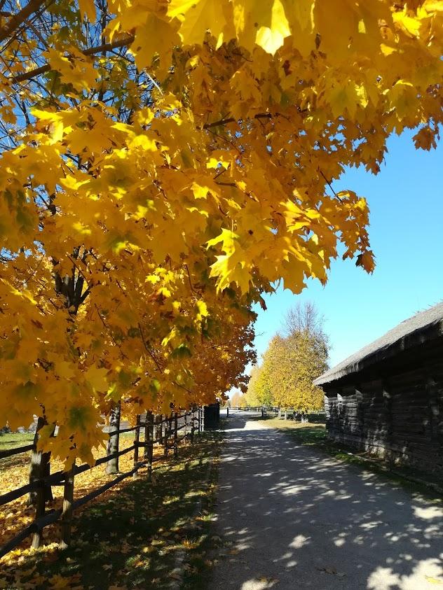 ozertso-village-museum-tour Photo