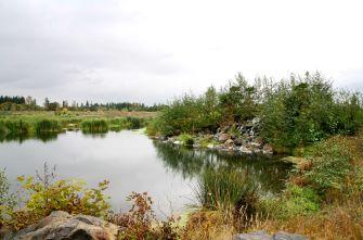 water at Talking Water Gardens
