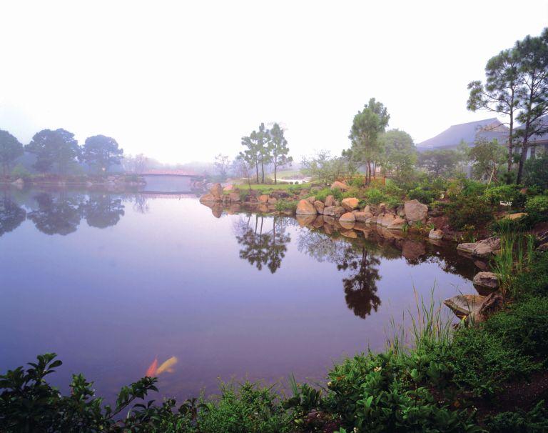 misty pond at Morikami Museum