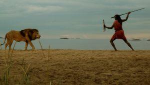 Masaimies uhkaa seipäällä leijonaa