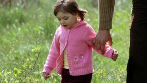 Tyttö kävelee niityllä aikuisen kanssa.