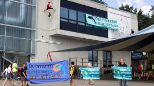 Aktivister från Oikeutta eläimille demonstrerar utanför delfinariet i Särkänniemi.