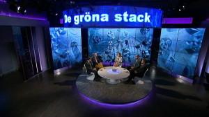 Obs debatt gästades av Ville Niinistö och Carl Haglund