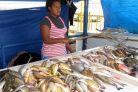 Fiji seafood