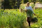 Farming in British Columbia