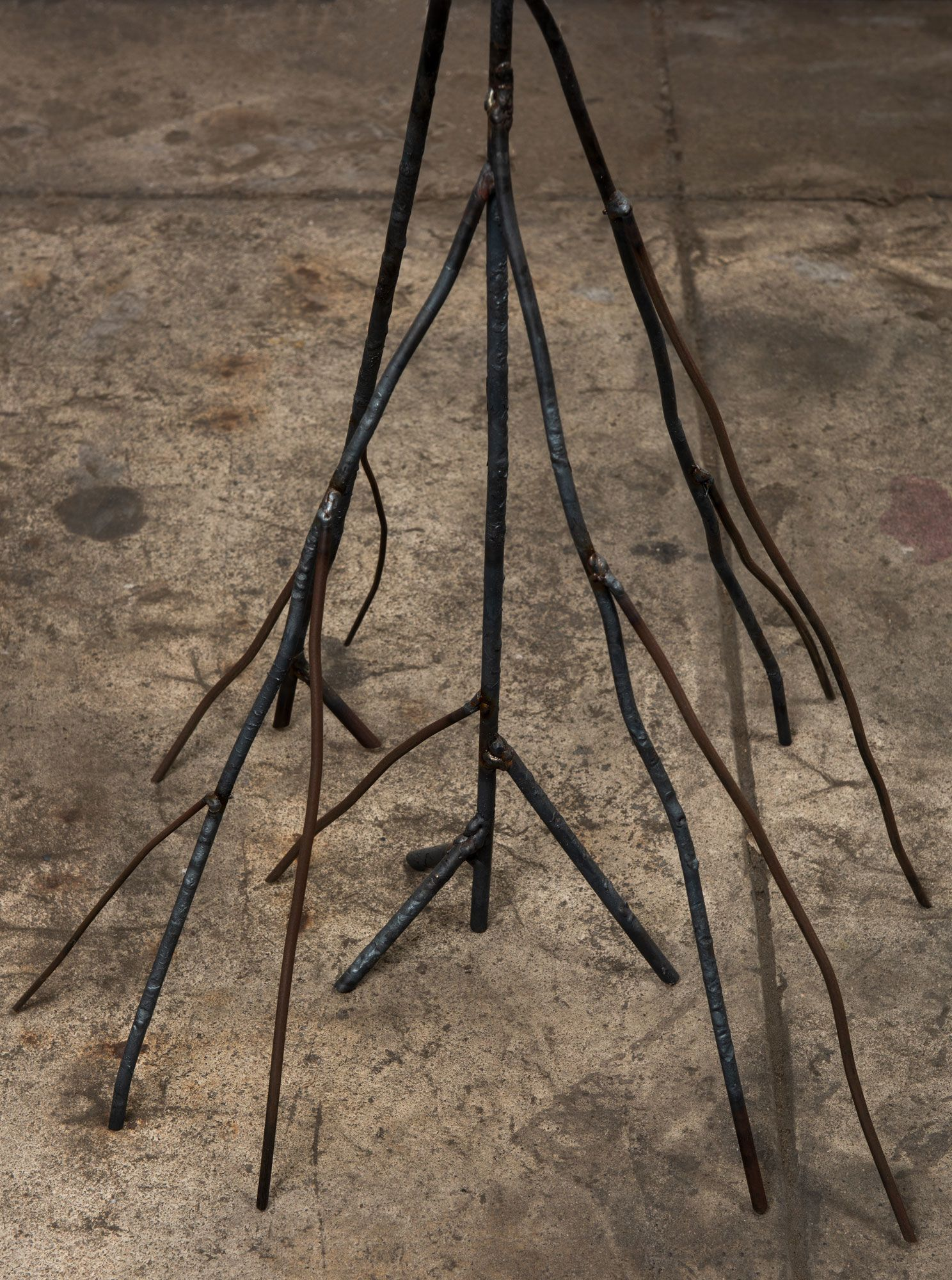 Beatriz Cortez, Roots 2, detail