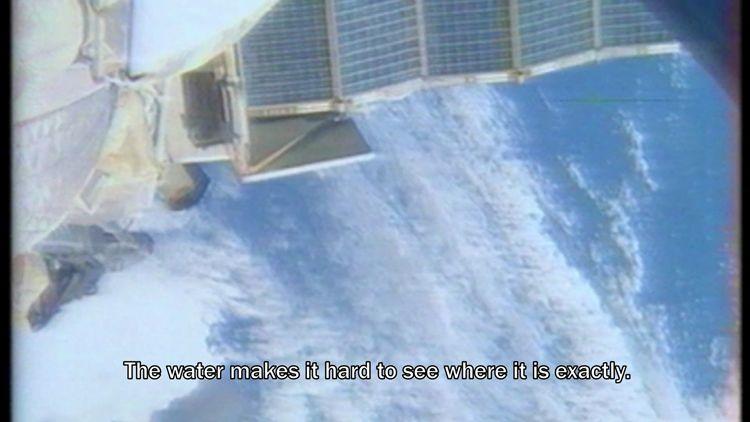 Above the Crocodiles, video still