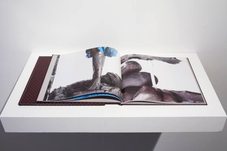 Aggregate Body (Book), 2014