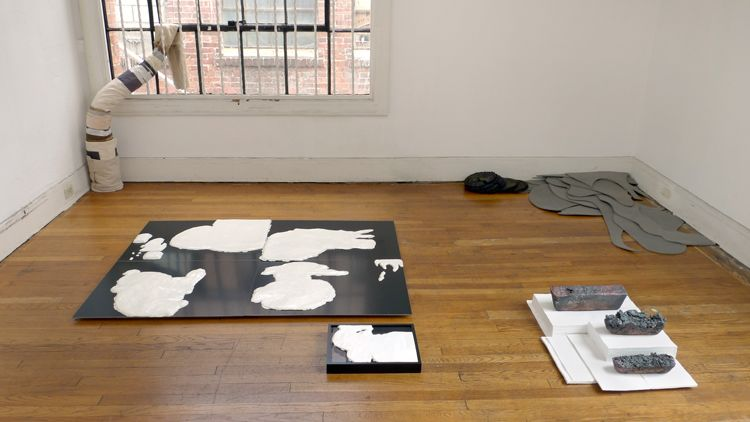 ...with Observations on their Habits installation view, 2012