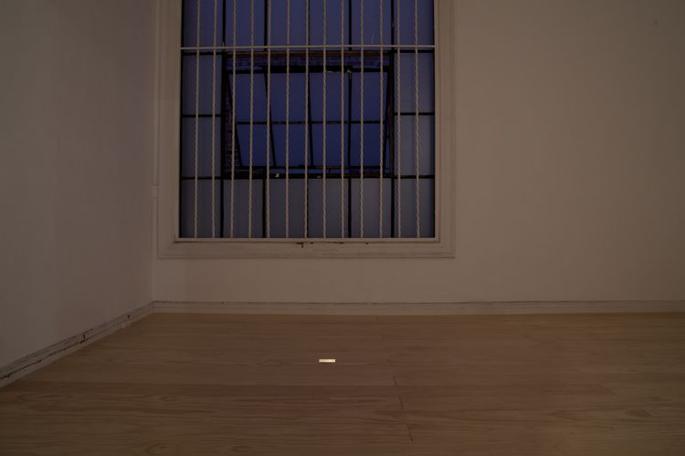 Installation view at dusk