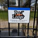 Pet Lodge Dog Kennel