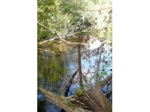River Lot Langlade County