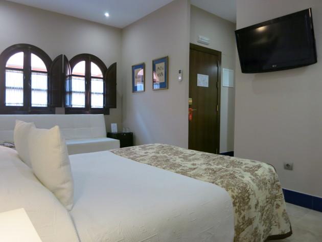 Hotel Patio De La Alameda 1
