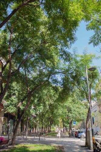 Foto preciosa del barrio