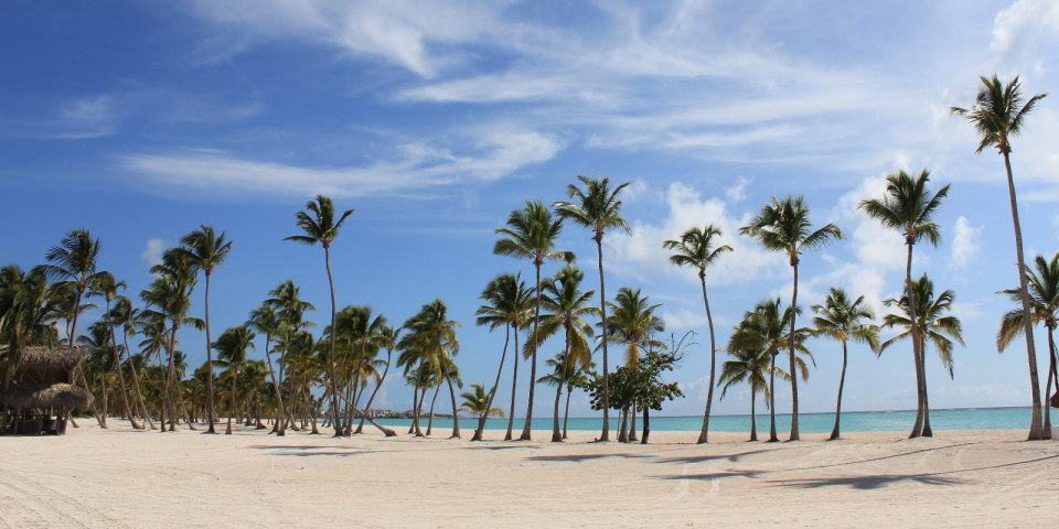 Trump-licensed luxury resort in DR restructures debt